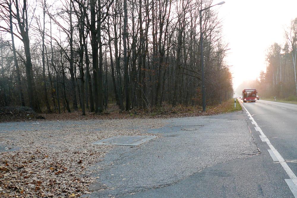 An der Liegnitzer Straße in Nürnberg-Langwasser begann die Mordserie des NSU. Hier hatte Enver Şimşek (39 Jahre) seinen Blumenstand aufgebaut, als er niedergeschossen wurde. Er starb zwei Tage später im Krankenhaus. (Foto: Birgit Mair)